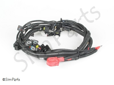 kabelboom (achterkant, motor & ECU Chery motor)